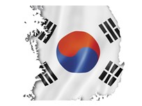 The State of the Commercial Fleet Market in South Korea