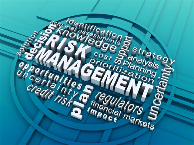 risk capital financial management