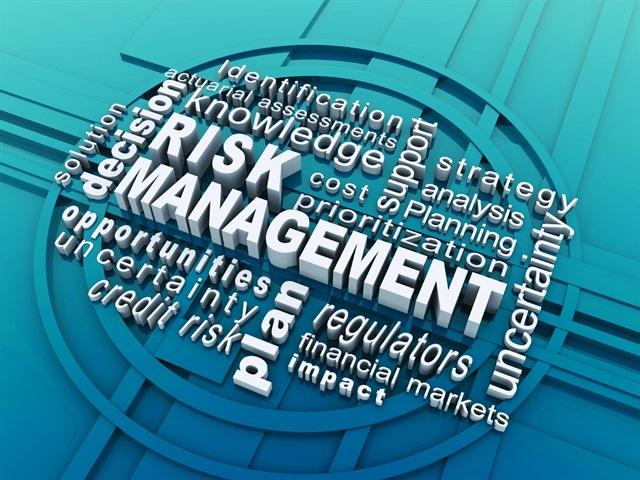 risk capital financial management