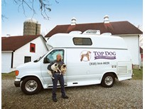 Customized Van Helps Groomer Run Mobile Salon