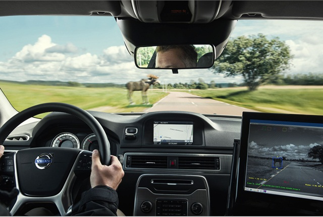 One of the new systems on the 2014 XC90 allows the vehicle to detect animals in the vehicle's path. This technology is slated for introduction after the vehicle's launch in 2014. Photo courtesy Volvo.