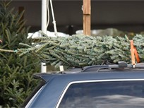 AAA Offers Advice for Transporting Christmas Trees