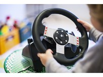 Neuroscience Fosters Insights into Driver Steering