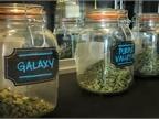<p><em>Photo of retail marijuana courtesy of HLDI.</em></p>