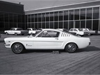 While enthusiasts refer to the first Mustangs as 1964 1/2 models, the