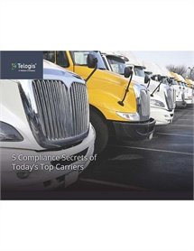 Whitepapers Automotive Fleet Page 2